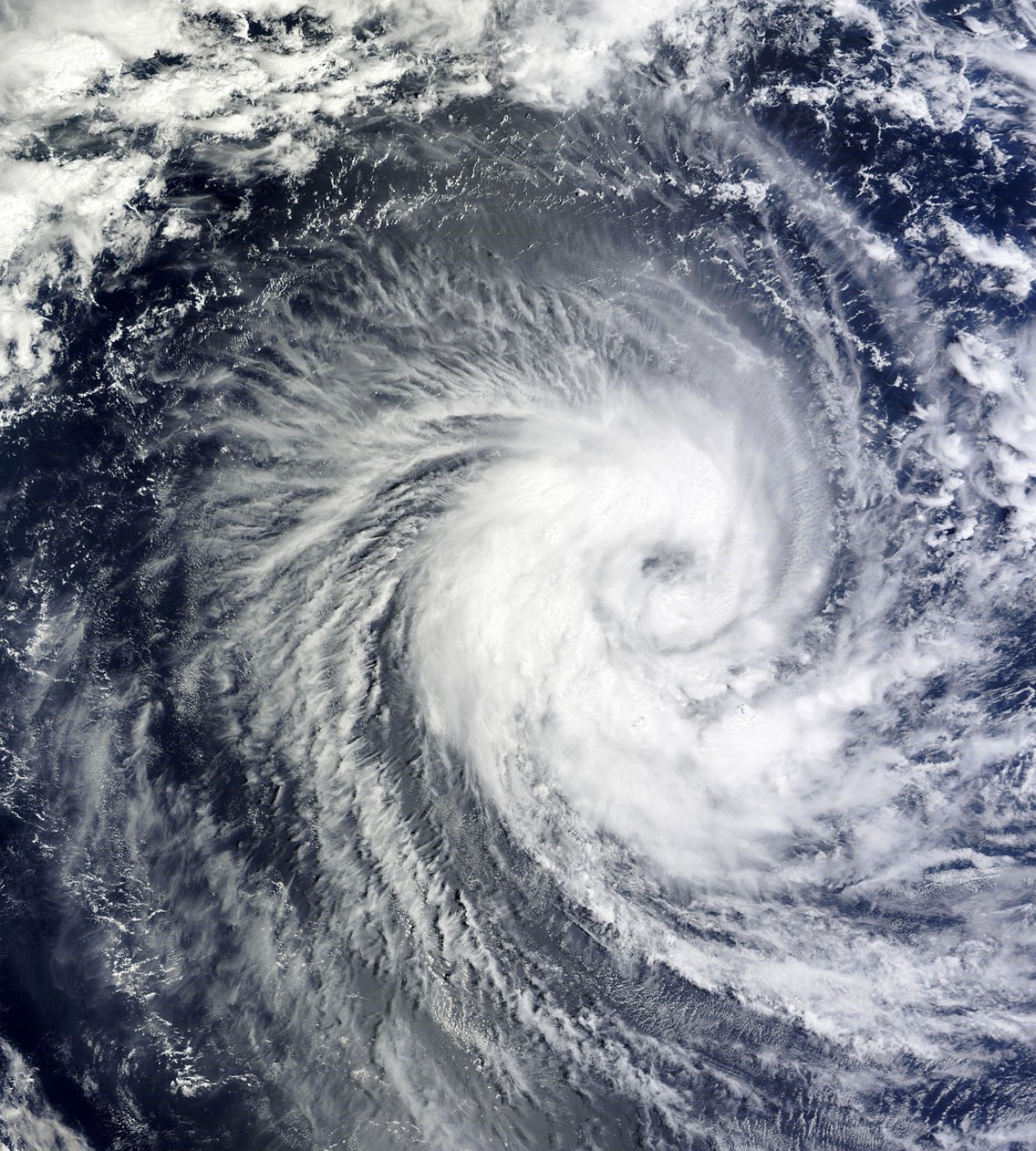 ILS-synergy2-hurricane-223050-edited.jpg